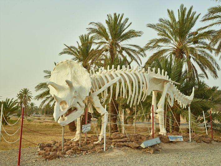 Una estatua del Triceratops, una especie que se encuentra en América del Norte, se asoma frente ...