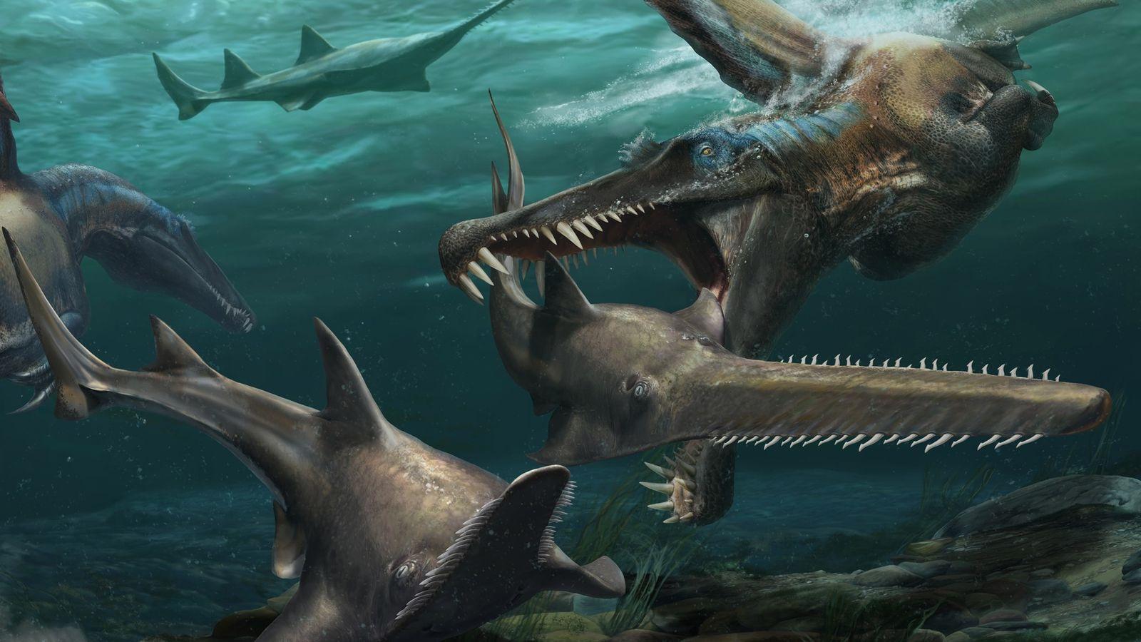 Fósiles descubiertos recientemente en Marruecos aportan evidencia de que el Spinosaurus pasaba gran parte de su vida en ...