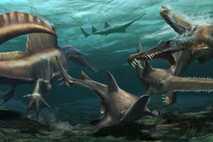 Dos Spinosaurus aegyptiacus cazan al pez sierra prehistórico Onchopristis en las aguas de un sistema fluvial ...