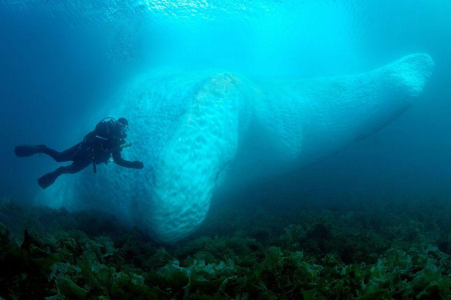 Un buceador nada junto a un iceberg subacuático en Kulusuk, Groenlandia.