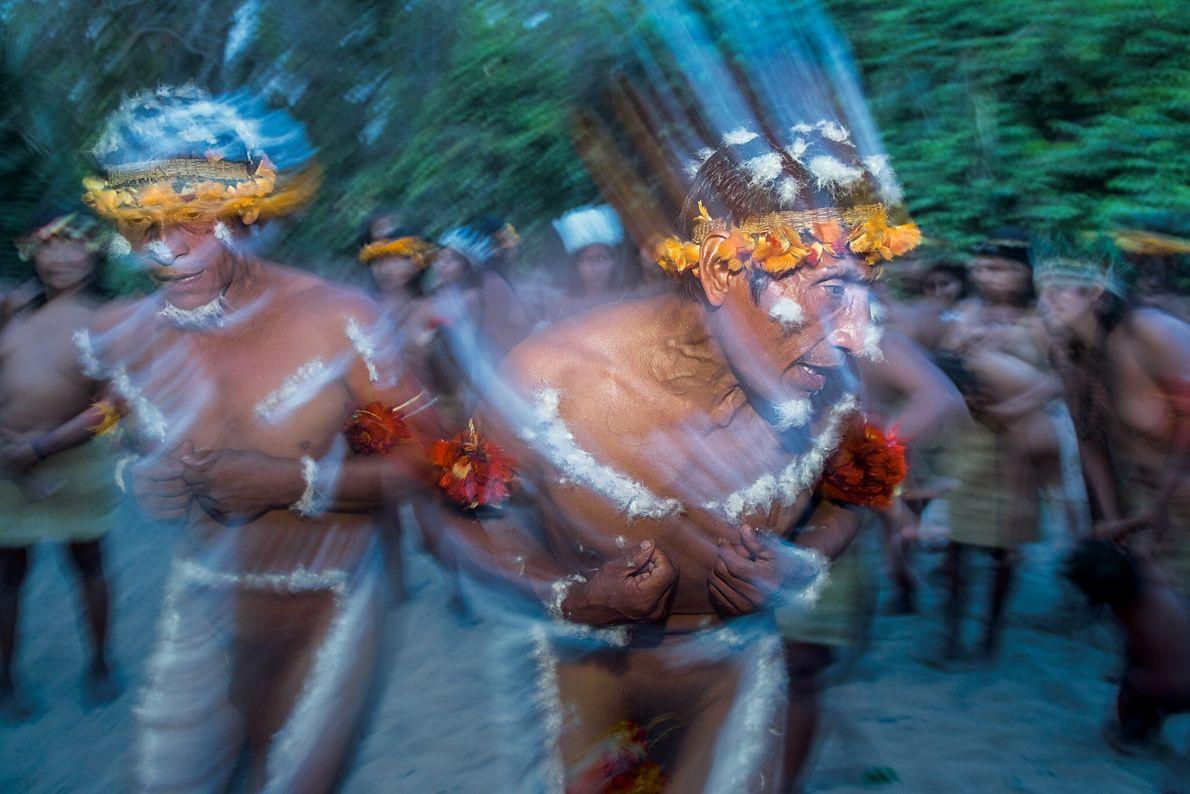 Los adultos mayores de la comunidad awá bailan en estado de trance para comunicarse con los karawara ...