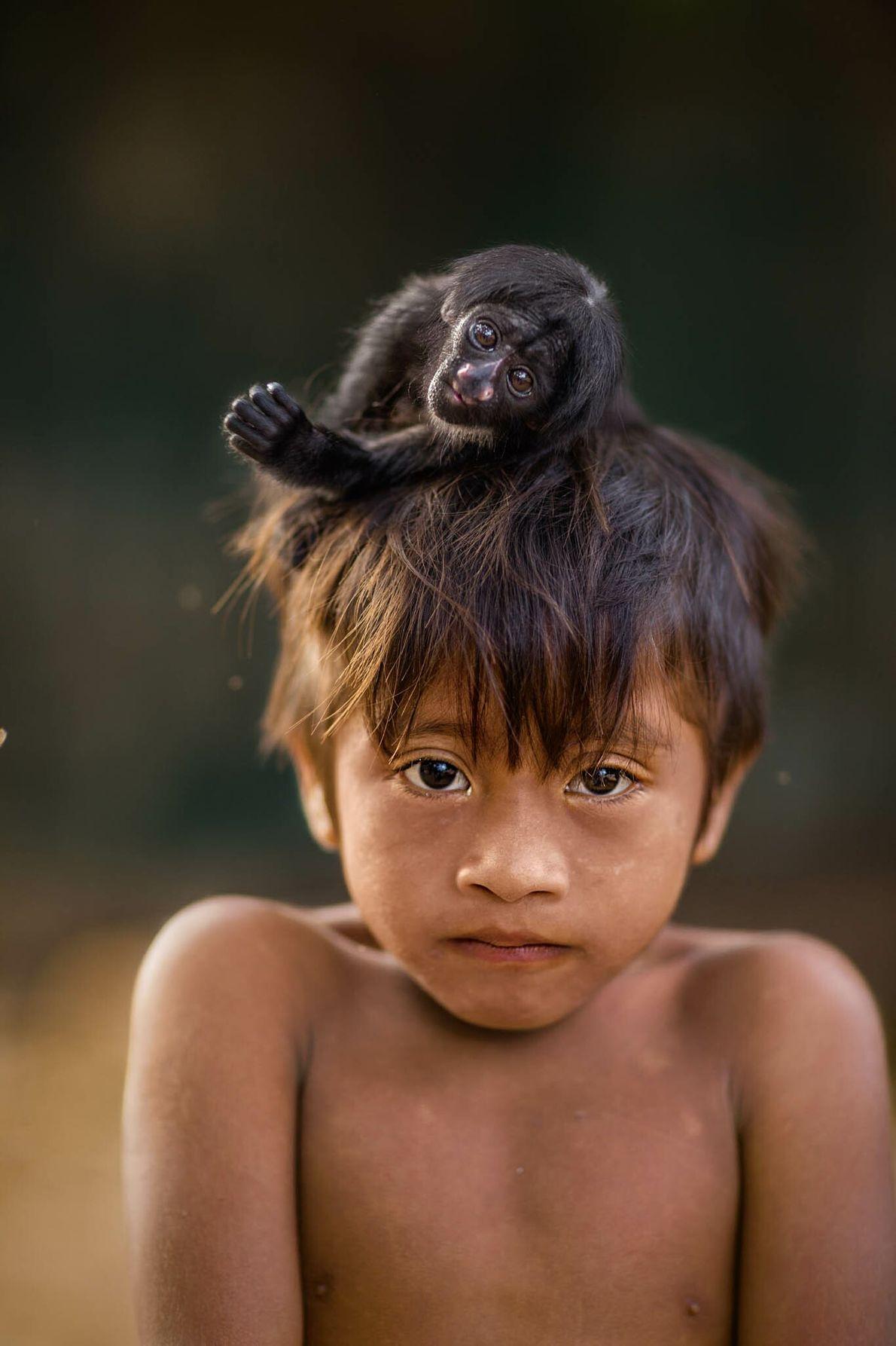 Kaiau, de cinco años, tiene un mono saki sobre la cabeza. Los awás cazan monos para comer ...