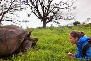 tourist-giant-tortoise-galapago