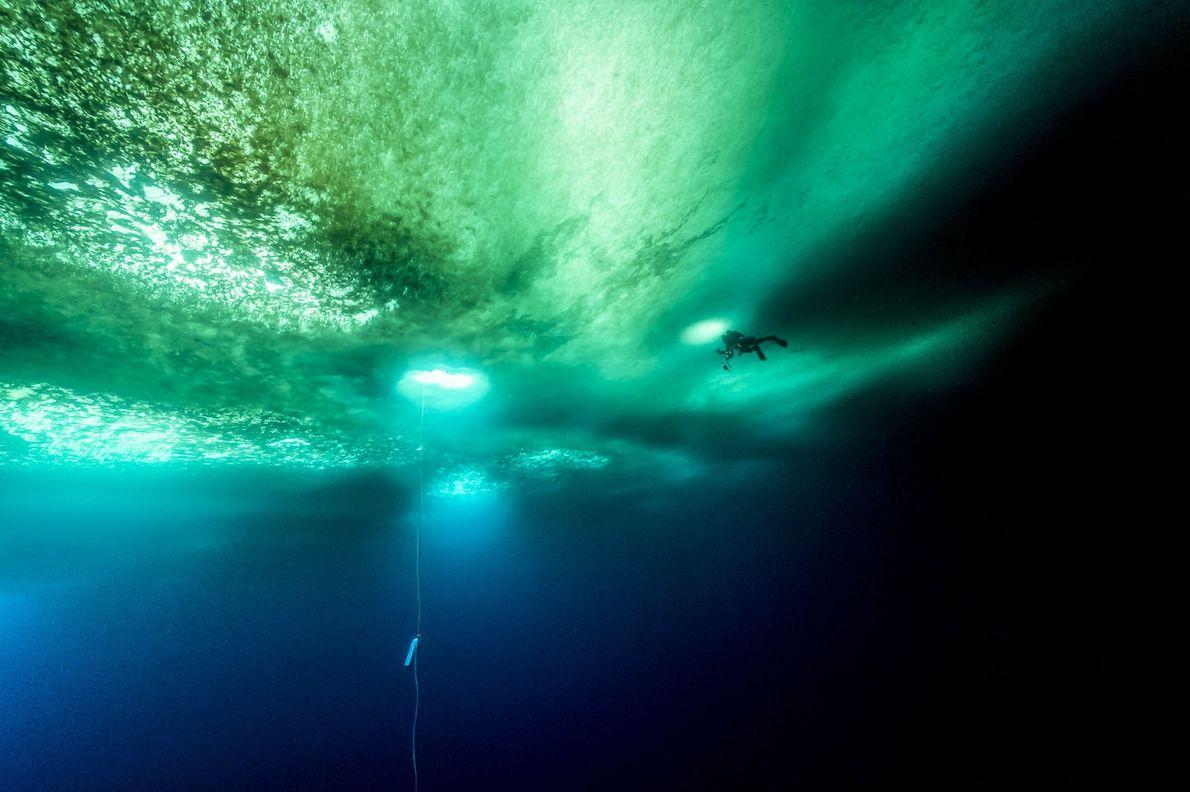 Un buceador nada bajo varios metros de hielo antártico. La cuerda que vemos en el agua ...