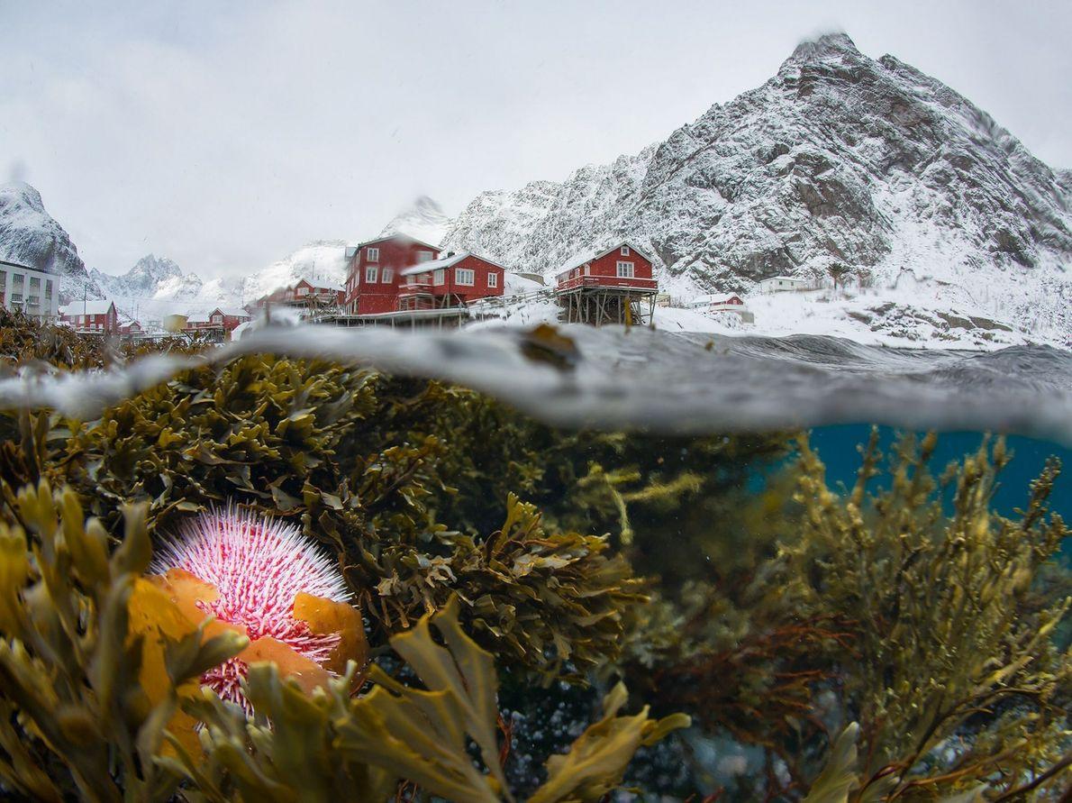 Underwater Village in Norway