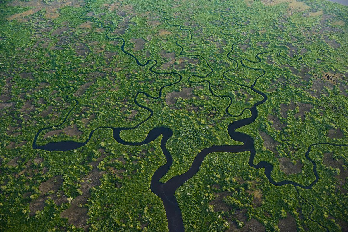 Everglades National Park, United States