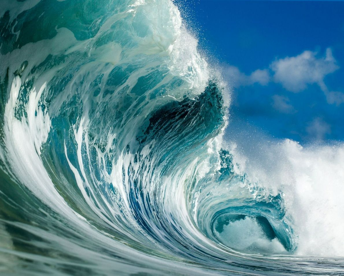 Epic Wave