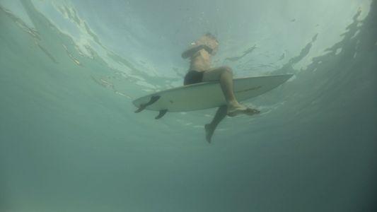 Un feroz ataque de tiburón en Recife | Cuando los tiburones atacan
