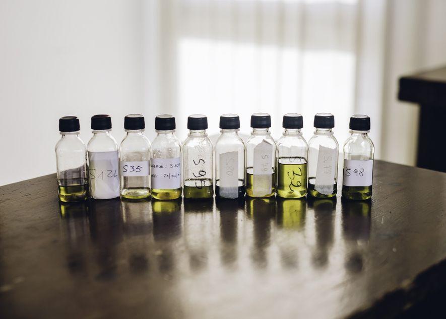 Científicos y agricultores intentan encontrar cultivares de olivos resistentes a la devastadora Xylella para poder remplazar los árboles muertos y moribundos. Han encontrado unas cuantas opciones prometedoras, pero necesitan comprobar si el aceite elaborado a partir de los nuevos cultivares sabe bien. Estos viales están llenos de aceite de varios cultivares nuevos que los agricultores van a probar.