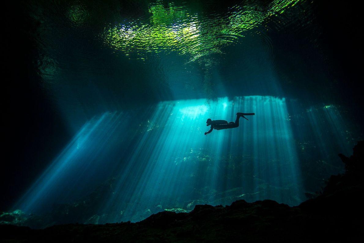 """Un rayo de sol ilumina a un buzo que nada en un cenote. """"Cuando te sumerges ..."""