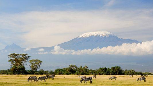 Ocho consejos para alcanzar la cumbre del Kilimanjaro