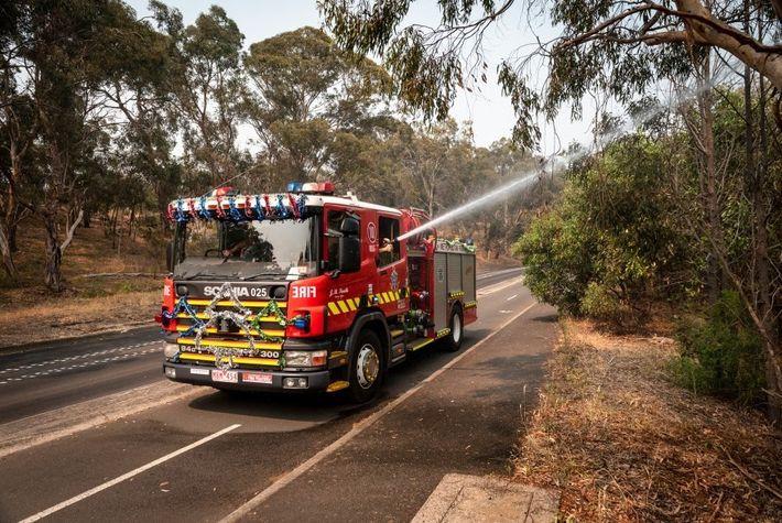 Los bomberos de la Cuerpo Metropolitano de Bomberos de Melbourne rocían con agua a los murciélagos ...